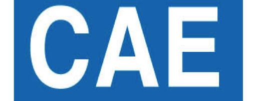 Международный экзамен CAE , или что делать,  когда вы дошли до уровня Advanced?