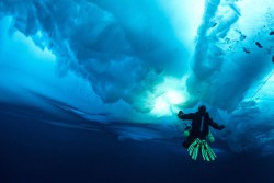 ice_diving_7