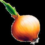 onion-150x150.jpg