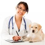 postadsuk.com-veterinary-receptionist-evening-hours-mon-fri-5-7-30pm-part-time-evening-amp-weekend