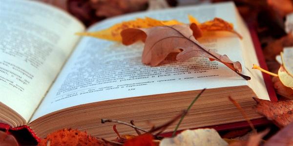 Книги на английском языке для уровня elementary – лучшая подборка для вас
